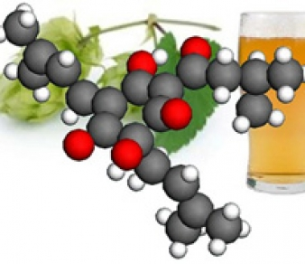 OVHA Sept Meeting – Brewing Chemistry